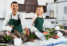 Positive cheerful shop assistants selling fresh fish. And chilled seafood stock photo