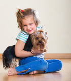 Positive child playing with Yorkie Royalty Free Stock Photos