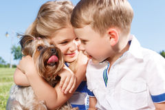 Positive children playing with dog. Nice time. Upbeat nice little girl embracing the dog and sitting with boy on blanket while expressing positivity stock photo