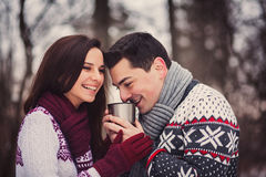 Positive couple drinking tea Stock Image
