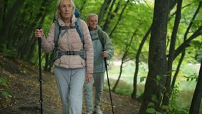 Positive couple of tourists walkign in the wood. To the adventures. Cheerful retired couple of tourists trying nordic walking and going along the path in the stock footage