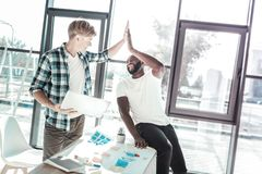 Positive delighted colleagues celebrating their result. High-five. Cheerful bearded foreigner sitting on the table and raising hand while looking at his partner stock image