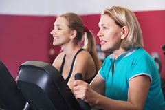 Positive elderly and young women working out in gym Royalty Free Stock Photo