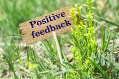 Positive feedback wooden sign. Positive feedback on wooden sign in garden with flower Stock Photography