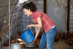 Positive female farmer giving feeding stuff Royalty Free Stock Photography