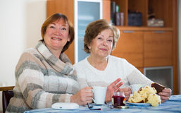 Positive female pensioners drinking coffee and chatting Stock Photos