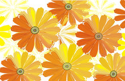 Positive floral background. Positive bright flower vector background Stock Photography