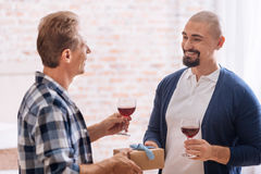 Positive gay couple drinking wine at home Stock Photography