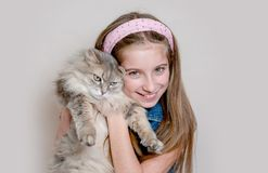 Positive girl playing with cat on grey background Royalty Free Stock Photography