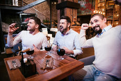 Positive handsome men showing their emotions. Interesting football match. Positive handsome nice men sitting at the table and showing their emotions while Stock Photos