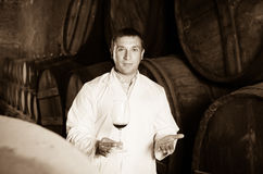 Positive house sommelier checking quality of red wine Royalty Free Stock Image