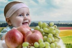 Positive kid smiles and rejoices in front of the table with fresh fruit on the background of the countryside. Stock Image