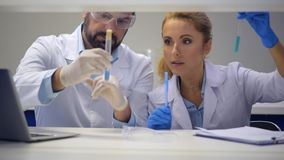 Positive minded colleague chatting over test tubes with chemical liquids stock video footage