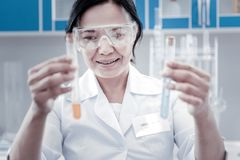 Positive minded lab worker examining test tubes with liquids. Loving this job. Selective focus on a beautiful female scientist smiling cheerfully while holding royalty free stock images