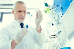 Positive minded scientist mixing chemical liquids in lab. Future breakthrough. Selective focus on a test tube and pipette used by a mature gentleman working in a stock image