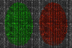 Positive and negative digital fingerprint. Red and green fingerprint revealing digital datastreams on a blurry grey background from zero and 1 Royalty Free Stock Image