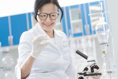 Positive nice woman holding a microscope slide. For the examination. Positive nice smart woman holding a microscope slide and intending to examine it while Stock Photography