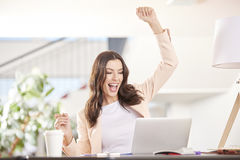 Positive outcomes. Shot of a successful young businesswoman working on laptop while sitting at office stock images