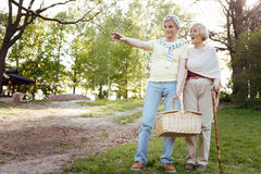 Positive pensioners looking for the place for picnic outdoors royalty free stock photo