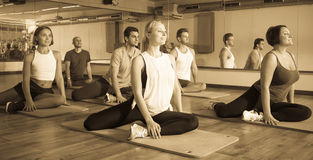 Positive people practicing yoga. Group of young positive people doing yoga in dance hall. Focus on brunet man Stock Photos