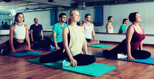 Positive people practicing yoga. Group of young positive people doing yoga in dance hall. Focus on brunet man Royalty Free Stock Photos