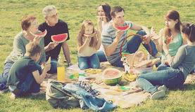 Positive people sitting on picnic together Royalty Free Stock Images