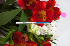 Positive pregnancy test with a bouquet of alstroemeria flowers. Peruvian lilies. Planning and waiting for a child, good news, surprise for future parents stock photography