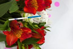 Positive pregnancy test with a bouquet of alstroemeria flowers. Peruvian lilies. Planning and waiting for a child, good news, surprise for future parents stock images