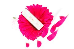 Positive pregnancy test and pink gerbera Royalty Free Stock Image