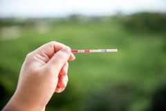 Positive pregnancy test on strip. royalty free stock image