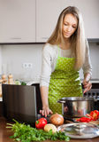 Positive pretty housewife with laptop Royalty Free Stock Photography
