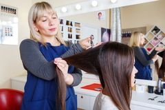 Hairdresser working with client on barbershop background. Woman styling hair. Barbershop concept. Copy space. royalty free stock photo