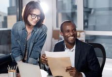 Positive professional employees are laboring with pleasure Royalty Free Stock Photography
