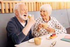 Positive senior couple enjoying lunch stock photography