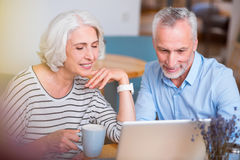 Free Positive Senior Couple Using Laptop Royalty Free Stock Photo - 76450505