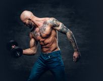 Positive shaved head shirtless male dressed in a jeans holds the. Dumbbell over dark grey background Royalty Free Stock Photo