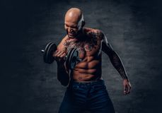 Positive shaved head shirtless male dressed in a jeans holds the. Dumbbell over dark grey background Stock Photos