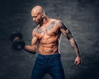 Positive shaved head shirtless male dressed in a jeans holds the. Dumbbell over dark grey background Royalty Free Stock Images
