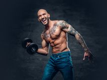 Positive shaved head shirtless male dressed in a jeans holds the. Dumbbell over dark grey background Royalty Free Stock Image