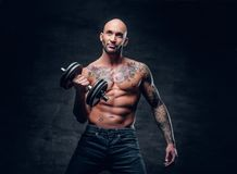 Positive shaved head shirtless male dressed in a jeans holds the. Dumbbell over dark grey background Stock Image