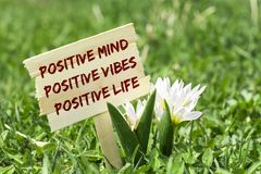 Positive sign. Positive mind , vibes , life on wooden sign in garden with spring flower Royalty Free Stock Image