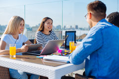 Positive students studying outdoors Royalty Free Stock Photo