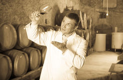 Positive taster posing with glass of wine. In winery cellar Stock Image