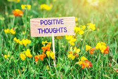 Positive thoughts signboard. Positive thoughts on small wooden signboard in the green grass with flowers and sun ray royalty free stock photography
