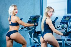 Positive two female friends training on elliptical trainers in fitness club, lifestyle concept. cardio training, fat. Burning, weight loss Royalty Free Stock Images