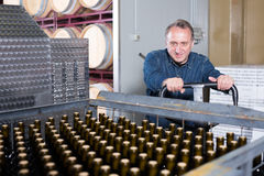 Positive wine maker unloads containers Stock Photos