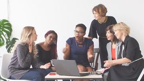 Positive women discuss organization plan while sitting at table with laptop stock video