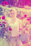 Positive young female working with bush roses with horticultural Stock Image