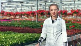 Positiver junger weiblicher landwirtschaftlicher Ingenieur, der die Aufstellung im mittleren Schuss des Gewächshauses bearbeitend stock video