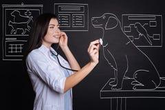 Positiver weiblicher Tierarzt, der einen Hund überprüft Lizenzfreie Stockfotos